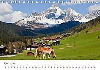 Pferde und Ponys im Paradies (Tischkalender 2019 DIN A5 quer) - Produktdetailbild 4
