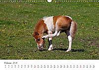 Pferde und Ponys im Paradies (Wandkalender 2019 DIN A3 quer) - Produktdetailbild 2