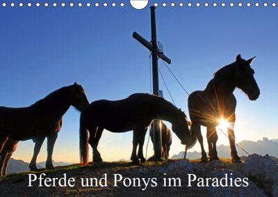 Pferde und Ponys im Paradies (Wandkalender 2019 DIN A4 quer), Christa Kramer