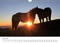 Pferde und Ponys im Paradies (Wandkalender 2019 DIN A4 quer) - Produktdetailbild 5