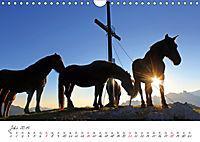 Pferde und Ponys im Paradies (Wandkalender 2019 DIN A4 quer) - Produktdetailbild 7