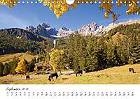 Pferde und Ponys im Paradies (Wandkalender 2019 DIN A4 quer) - Produktdetailbild 9
