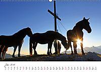 Pferde und Ponys im Paradies (Wandkalender 2019 DIN A2 quer) - Produktdetailbild 7