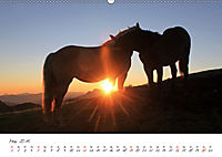 Pferde und Ponys im Paradies (Wandkalender 2019 DIN A2 quer) - Produktdetailbild 5