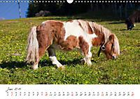 Pferde und Ponys im Paradies (Wandkalender 2019 DIN A3 quer) - Produktdetailbild 6