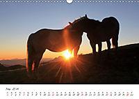 Pferde und Ponys im Paradies (Wandkalender 2019 DIN A3 quer) - Produktdetailbild 5
