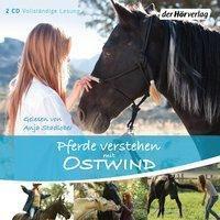 Pferde verstehen mit Ostwind, 2 Audio-CDs, Almut Schmidt