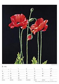 Pflanzen der Bibel 2019 - Produktdetailbild 5