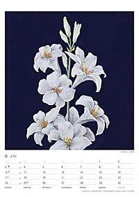 Pflanzen der Bibel 2019 - Produktdetailbild 6