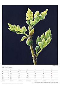 Pflanzen der Bibel 2019 - Produktdetailbild 12