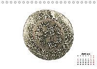 Pflanzen unter dem Mikroskop (Tischkalender 2019 DIN A5 quer) - Produktdetailbild 6