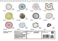 Pflanzen unter dem Mikroskop (Wandkalender 2019 DIN A4 quer) - Produktdetailbild 4