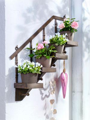 Pflanzentreppe jetzt bei bestellen for Blumentopf wand