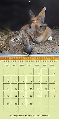 photogenic rabbits (Wall Calendar 2019 300 × 300 mm Square) - Produktdetailbild 2