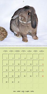 photogenic rabbits (Wall Calendar 2019 300 × 300 mm Square) - Produktdetailbild 7