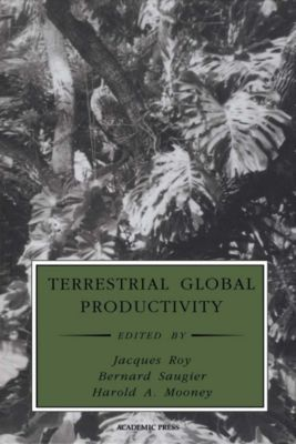 Physiological Ecology: Terrestrial Global Productivity