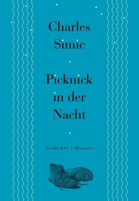 Picknick in der Nacht - Charles Simic |