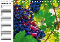 Piemont und Turin (Tischkalender 2019 DIN A5 quer) - Produktdetailbild 5