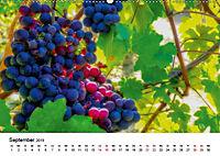 Piemont und Turin (Wandkalender 2019 DIN A2 quer) - Produktdetailbild 7