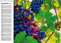 Piemont und Turin (Wandkalender 2019 DIN A4 quer) - Produktdetailbild 9