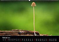 Pilze, die stillen Waldbewohner 2019 (Wandkalender 2019 DIN A2 quer) - Produktdetailbild 2