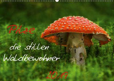 Pilze, die stillen Waldbewohner 2019 (Wandkalender 2019 DIN A2 quer), Hernegger Arnold