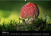 Pilze, die stillen Waldbewohner 2019 (Wandkalender 2019 DIN A2 quer) - Produktdetailbild 10