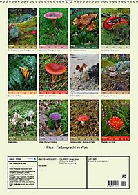Pilze - Farbenpracht im Wald (Wandkalender 2019 DIN A2 hoch) - Produktdetailbild 12