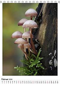 Pilzgalerie - Faszinierende Pilzaufnahmen aus der Region Rheinland-Pfalz (Tischkalender 2019 DIN A5 hoch) - Produktdetailbild 7