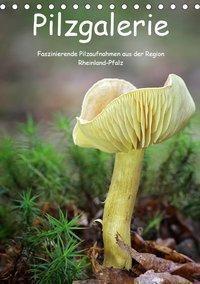 Pilzgalerie - Faszinierende Pilzaufnahmen aus der Region Rheinland-Pfalz (Tischkalender 2019 DIN A5 hoch), Beate Wurster