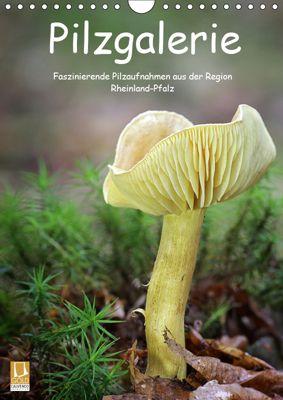 Pilzgalerie - Faszinierende Pilzaufnahmen aus der Region Rheinland-Pfalz (Wandkalender 2019 DIN A4 hoch), Beate Wurster