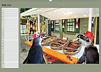 Pinguine privat Planer (Wandkalender 2019 DIN A2 quer) - Produktdetailbild 6