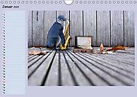 Pinguine privat Planer (Wandkalender 2019 DIN A4 quer) - Produktdetailbild 1