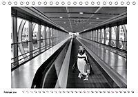 Pinguine privat (Tischkalender 2019 DIN A5 quer) - Produktdetailbild 2