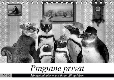 Pinguine privat (Tischkalender 2019 DIN A5 quer), Garrulus glandarius