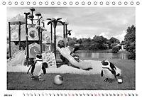 Pinguine privat (Tischkalender 2019 DIN A5 quer) - Produktdetailbild 7