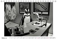 Pinguine privat (Tischkalender 2019 DIN A5 quer) - Produktdetailbild 10