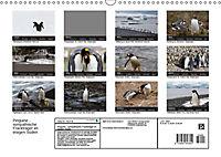 Pinguine - sympathische Frackträger im eisigen Süden (Wandkalender 2019 DIN A3 quer) - Produktdetailbild 13