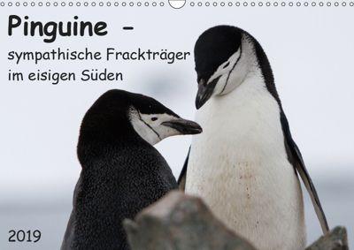 Pinguine - sympathische Frackträger im eisigen Süden (Wandkalender 2019 DIN A3 quer), Anna-Barbara Utelli