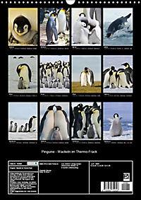 Pinguine - Wackeln im Thermo-Frack (Wandkalender 2019 DIN A3 hoch) - Produktdetailbild 13