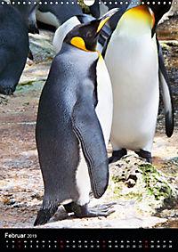 Pinguine - Wackeln im Thermo-Frack (Wandkalender 2019 DIN A3 hoch) - Produktdetailbild 2