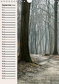 Plane deinen Weg (Wandkalender 2019 DIN A4 hoch) - Produktdetailbild 9