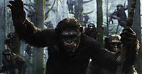 Planet der Affen: Revolution - Produktdetailbild 2