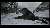 Planet der Affen: Survival - Produktdetailbild 3