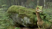 Planet Deutschland - 300 Millionen Jahre - Produktdetailbild 10