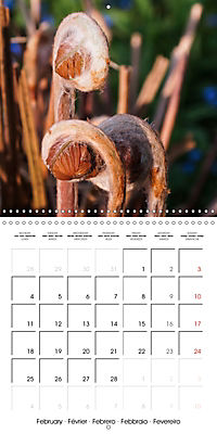 Plants close-up (Wall Calendar 2019 300 × 300 mm Square) - Produktdetailbild 2
