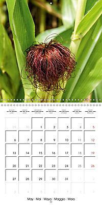 Plants close-up (Wall Calendar 2019 300 × 300 mm Square) - Produktdetailbild 5