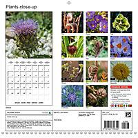 Plants close-up (Wall Calendar 2019 300 × 300 mm Square) - Produktdetailbild 13