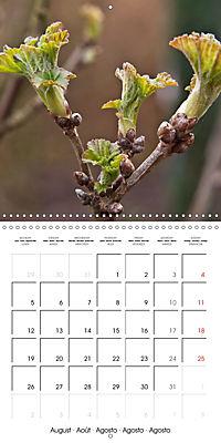 Plants close-up (Wall Calendar 2019 300 × 300 mm Square) - Produktdetailbild 8