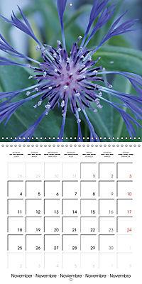 Plants close-up (Wall Calendar 2019 300 × 300 mm Square) - Produktdetailbild 11
